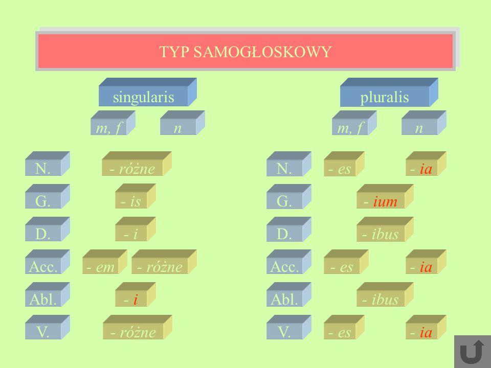 TYP SAMOGŁOSKOWY singularis pluralis m, f n m, f n N. - różne N. - es