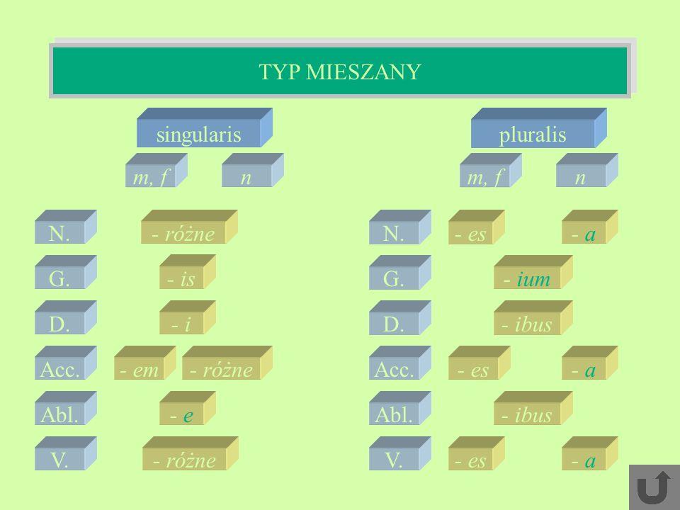 TYP MIESZANY singularis pluralis m, f n m, f n N. - różne N. - es - a