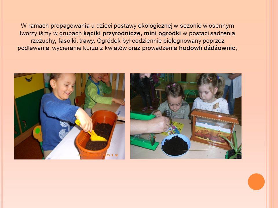 W ramach propagowania u dzieci postawy ekologicznej w sezonie wiosennym tworzyliśmy w grupach kąciki przyrodnicze, mini ogródki w postaci sadzenia rzeżuchy, fasolki, trawy.