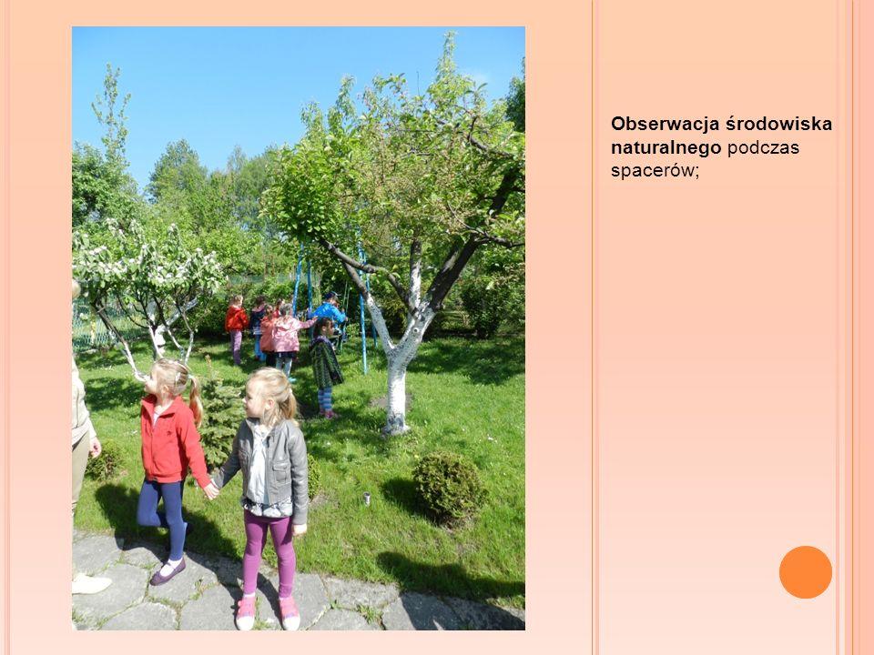Obserwacja środowiska naturalnego podczas spacerów;