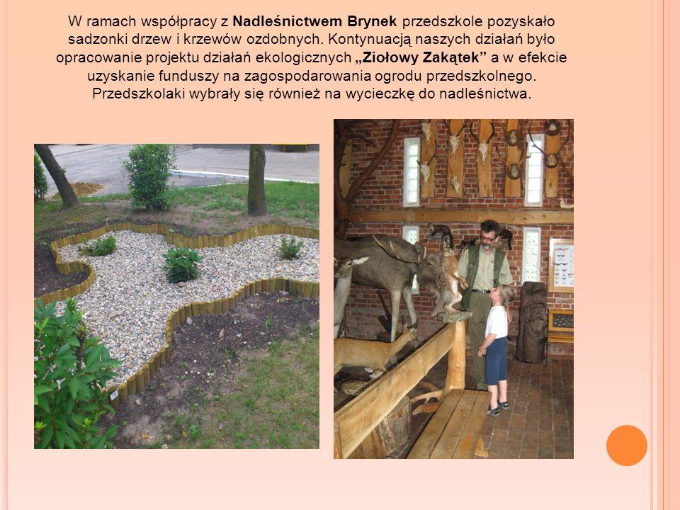 W ramach współpracy z Nadleśnictwem Brynek przedszkole pozyskało sadzonki drzew i krzewów ozdobnych.