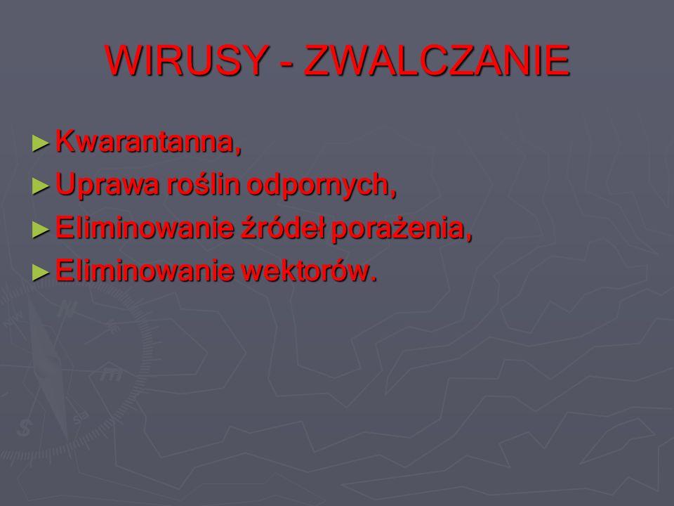 WIRUSY - ZWALCZANIE Kwarantanna, Uprawa roślin odpornych,