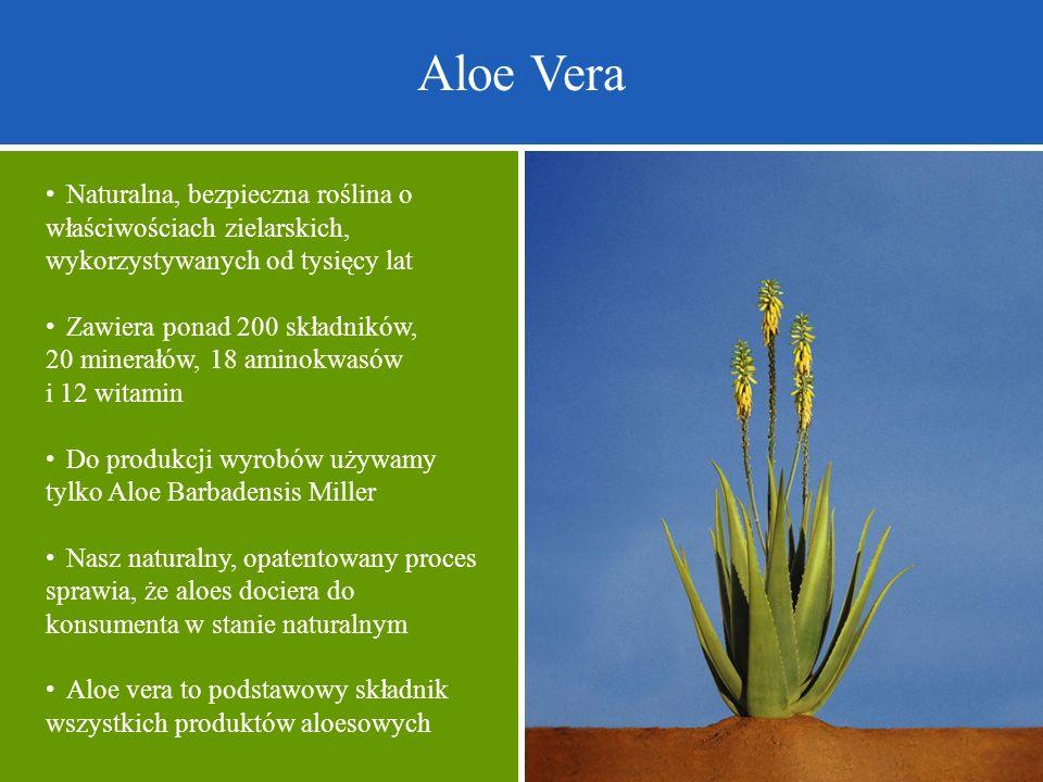 Aloe Vera • Naturalna, bezpieczna roślina o właściwościach zielarskich, wykorzystywanych od tysięcy lat.