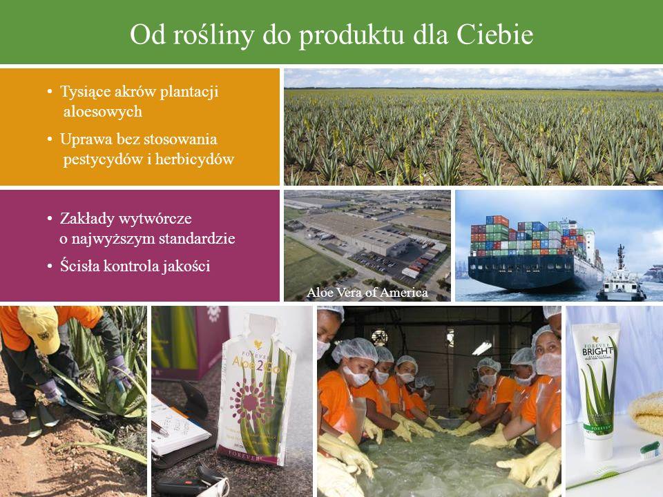 Od rośliny do produktu dla Ciebie