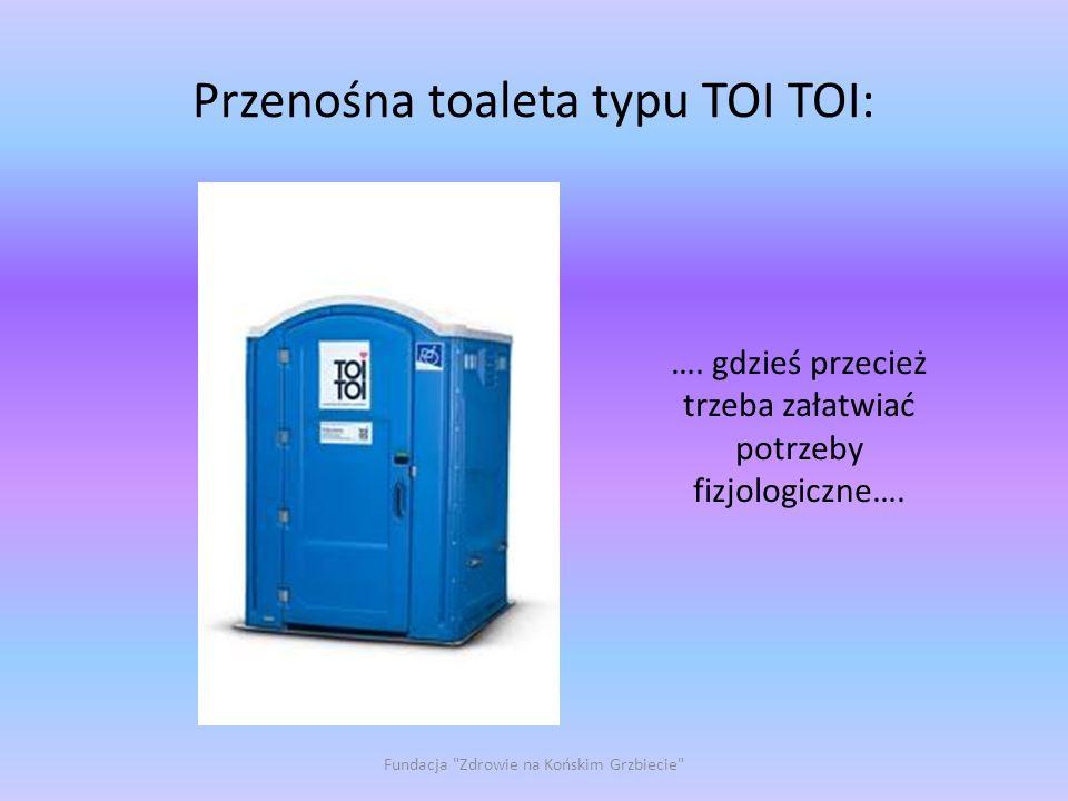 Przenośna toaleta typu TOI TOI: