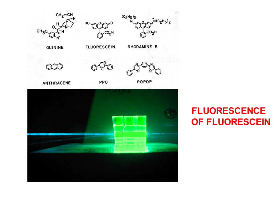 FLUORESCENCE OF FLUORESCEIN