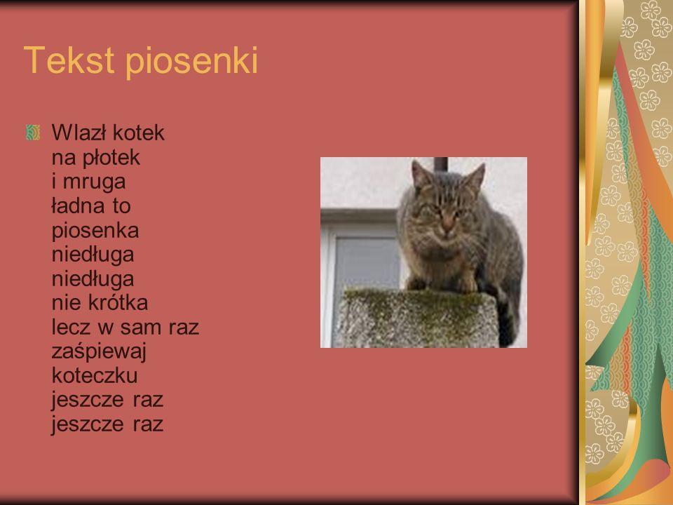 Tekst piosenki Wlazł kotek na płotek i mruga ładna to piosenka niedługa niedługa nie krótka lecz w sam raz zaśpiewaj koteczku jeszcze raz jeszcze raz.