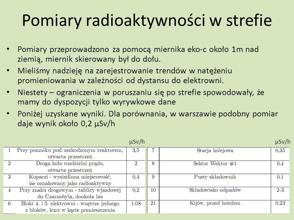 Pomiary radioaktywności w strefie