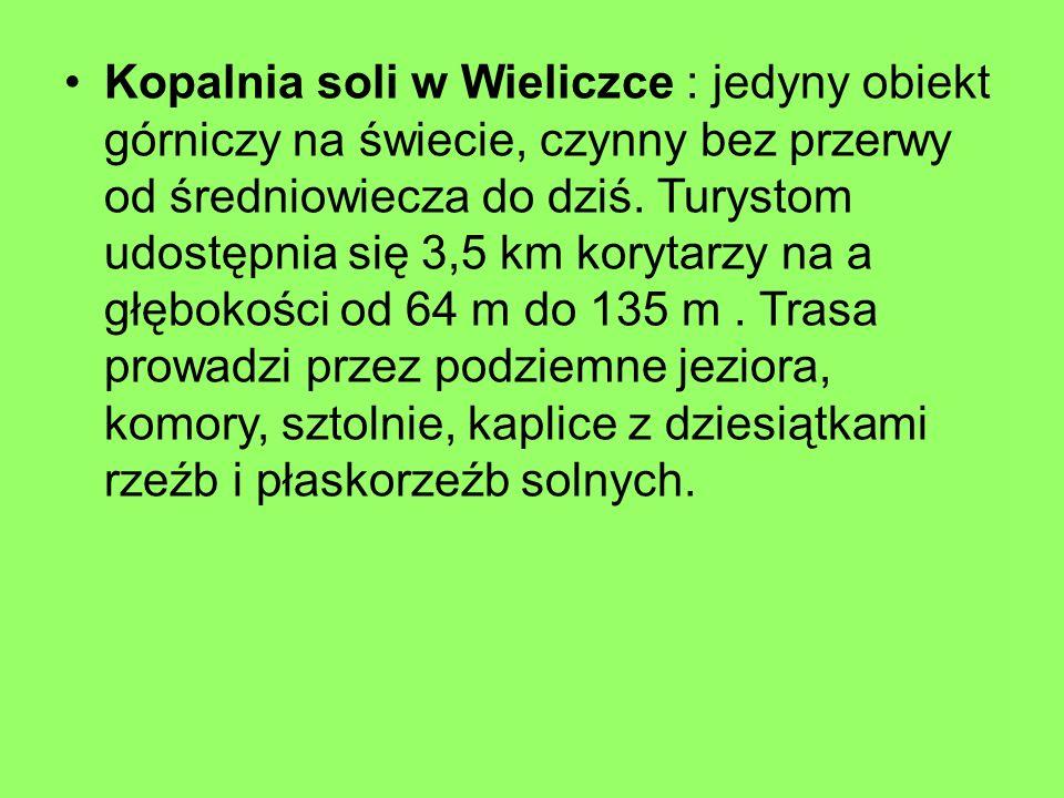 Kopalnia soli w Wieliczce : jedyny obiekt górniczy na świecie, czynny bez przerwy od średniowiecza do dziś.