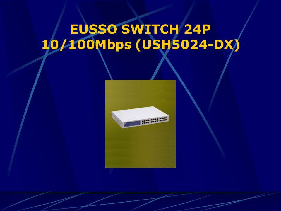 EUSSO SWITCH 24P 10/100Mbps (USH5024-DX)