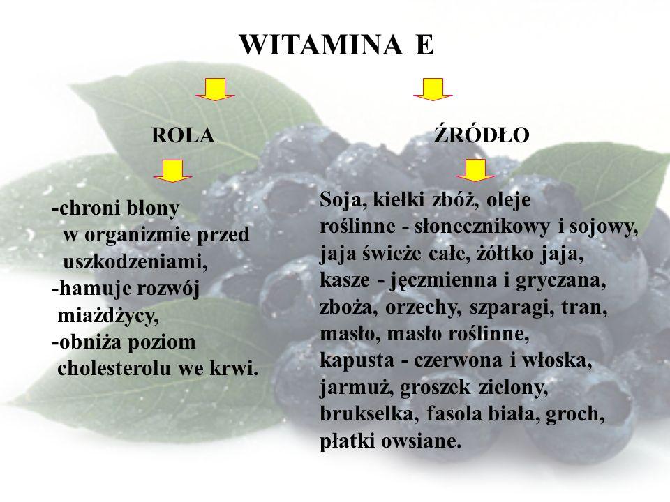 WITAMINA E ROLA ŹRÓDŁO Soja, kiełki zbóż, oleje