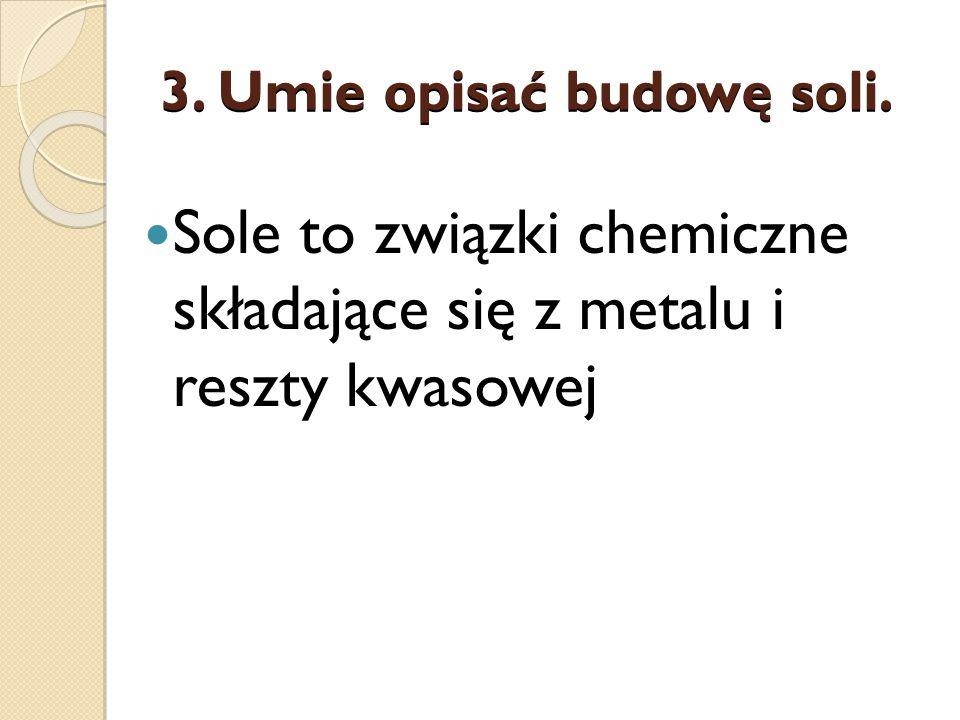3. Umie opisać budowę soli.