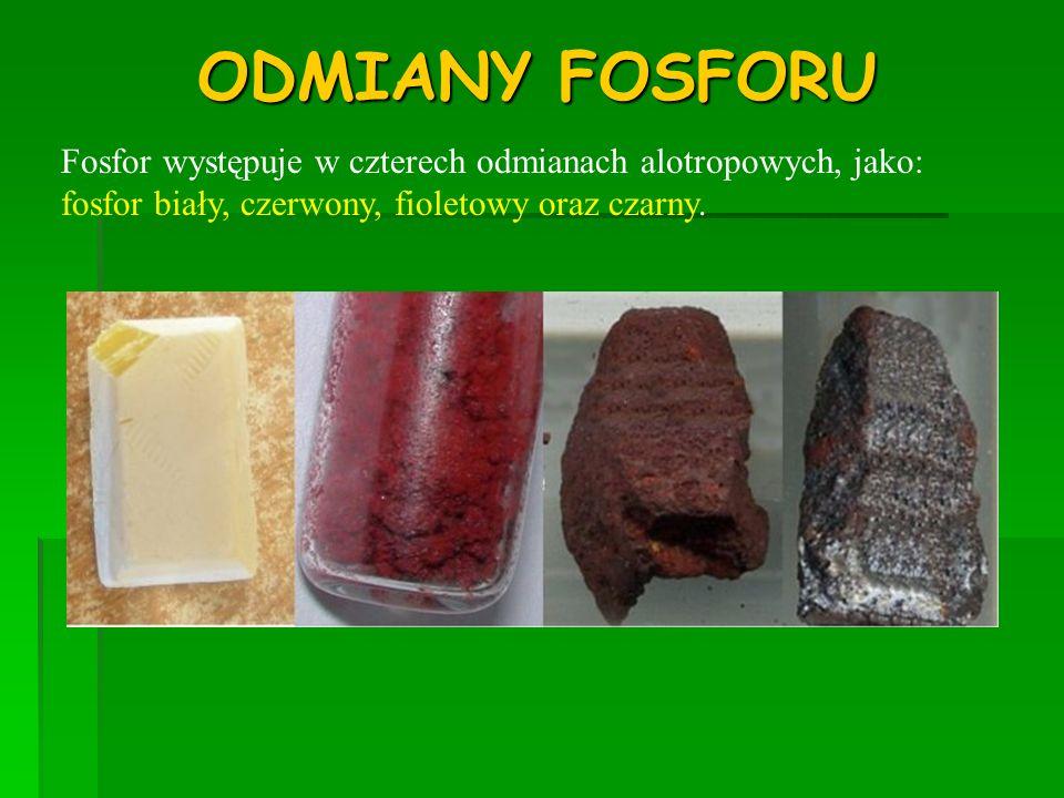 ODMIANY FOSFORUFosfor występuje w czterech odmianach alotropowych, jako: fosfor biały, czerwony, fioletowy oraz czarny.