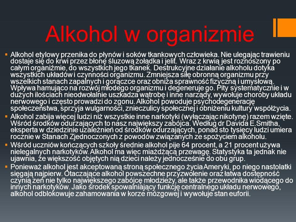 Alkohol w organizmie