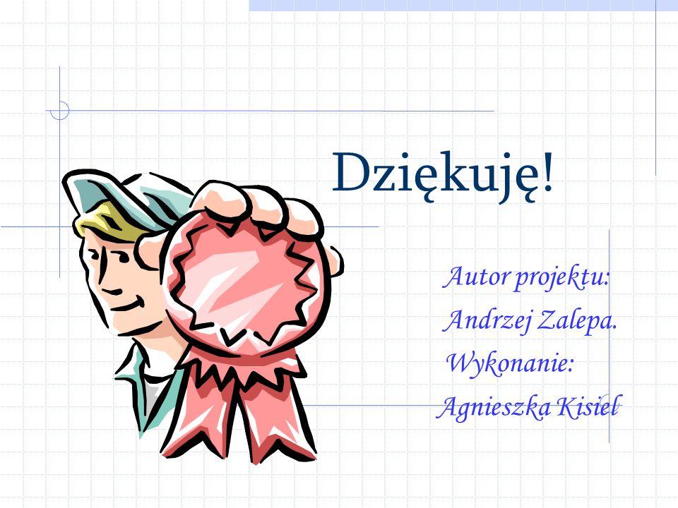 Autor projektu: Andrzej Zalepa. Wykonanie: Agnieszka Kisiel