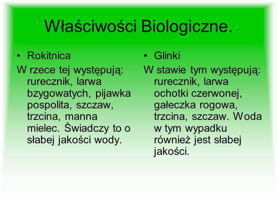Właściwości Biologiczne.