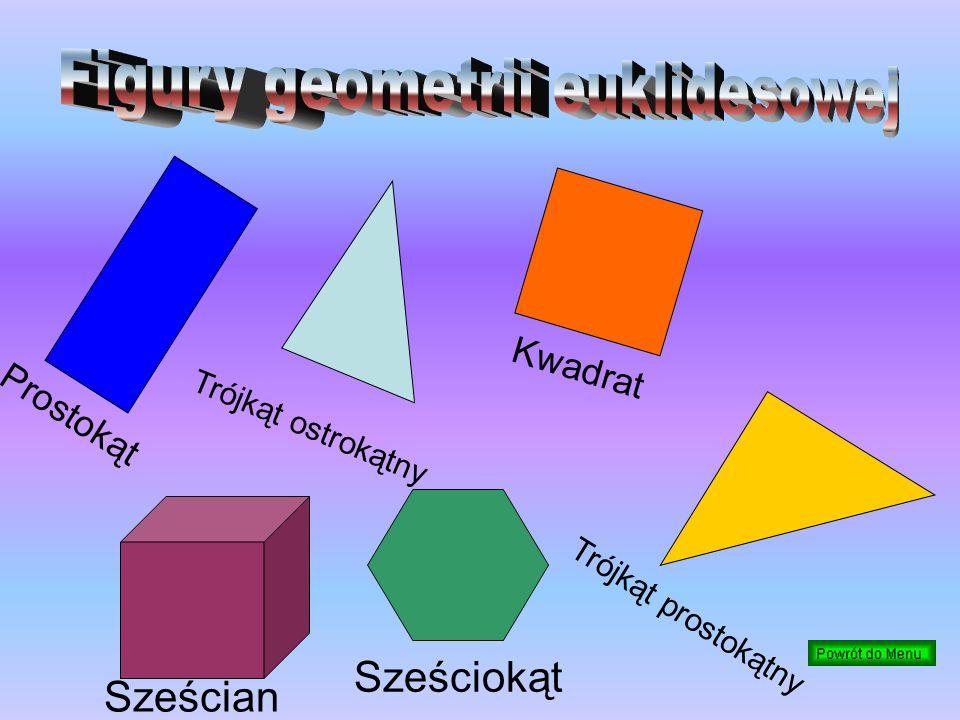 Figury geometrii euklidesowej