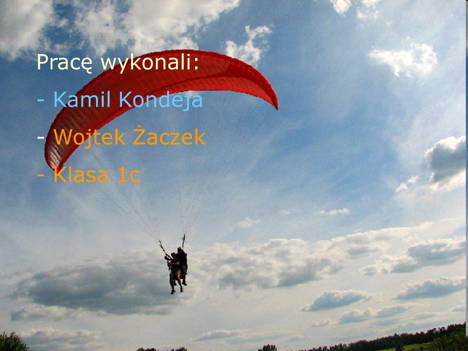 Pracę wykonali: Kamil Kondeja Wojtek Żaczek Klasa 1c