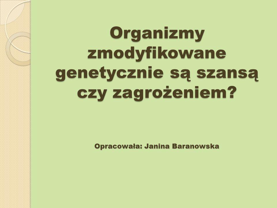 Organizmy zmodyfikowane genetycznie są szansą czy zagrożeniem