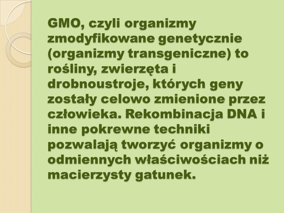GMO, czyli organizmy zmodyfikowane genetycznie (organizmy transgeniczne) to rośliny, zwierzęta i drobnoustroje, których geny zostały celowo zmienione przez człowieka.