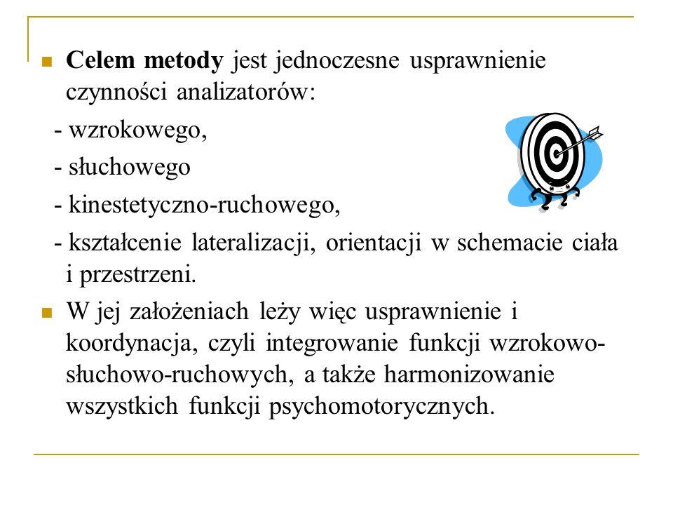Celem metody jest jednoczesne usprawnienie czynności analizatorów: