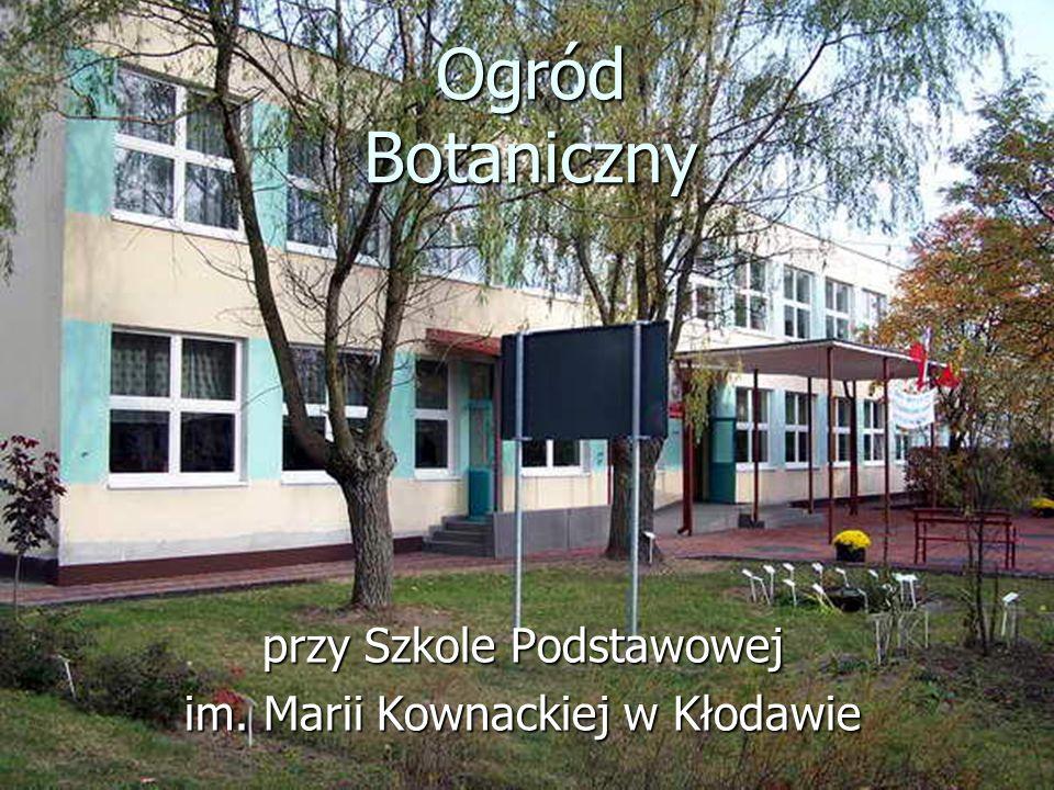 przy Szkole Podstawowej im. Marii Kownackiej w Kłodawie
