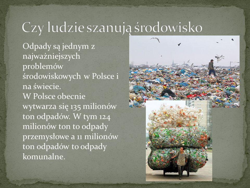 Czy ludzie szanują środowisko