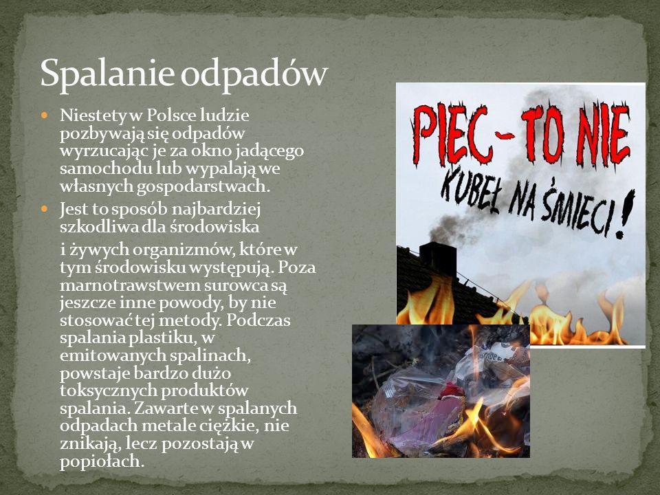 Spalanie odpadów Niestety w Polsce ludzie pozbywają się odpadów wyrzucając je za okno jadącego samochodu lub wypalają we własnych gospodarstwach.