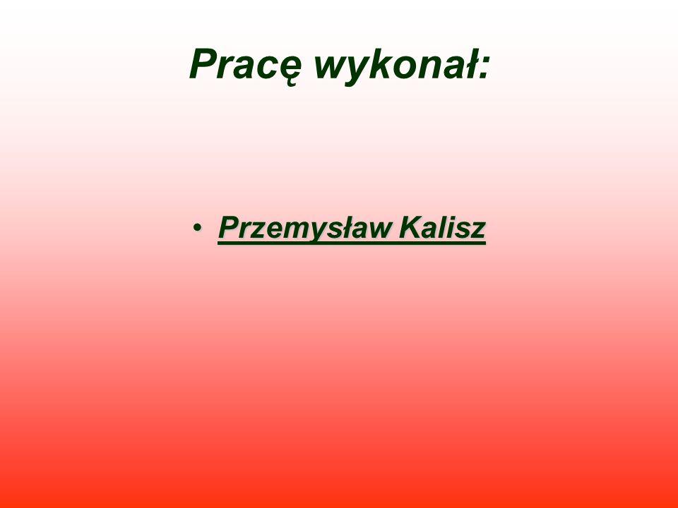 Pracę wykonał: Przemysław Kalisz