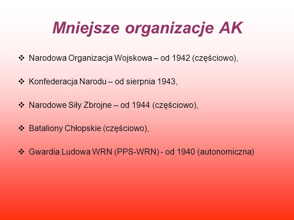 Mniejsze organizacje AK