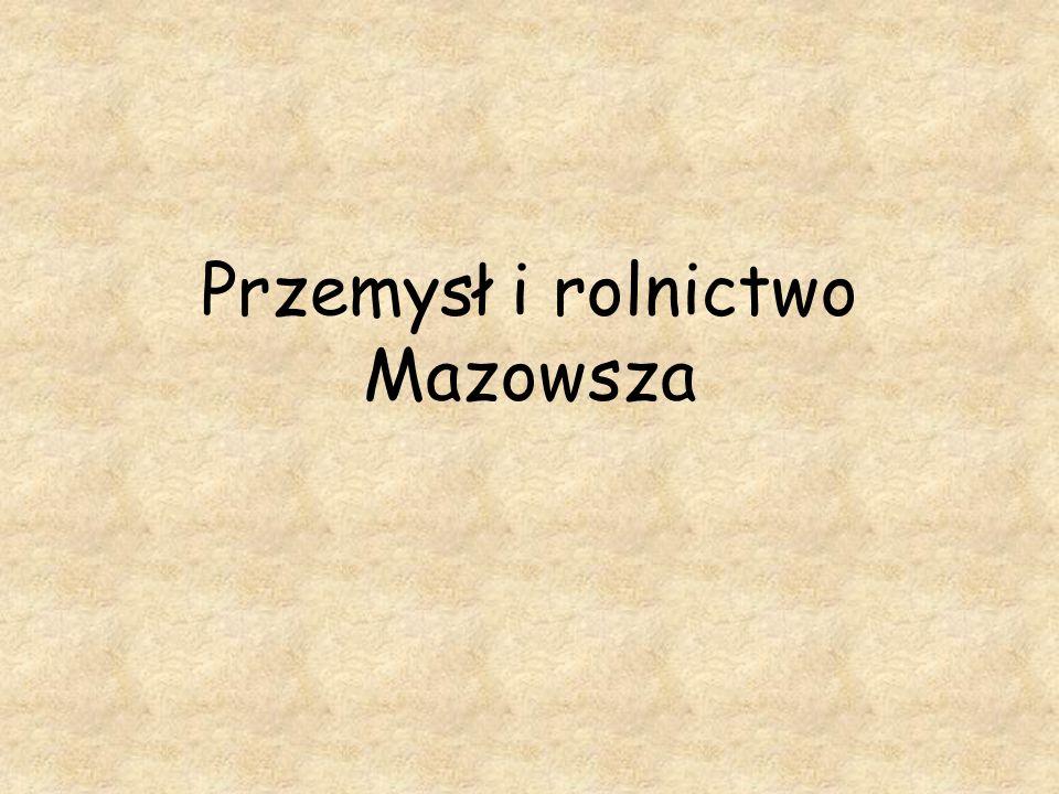 Przemysł i rolnictwo Mazowsza