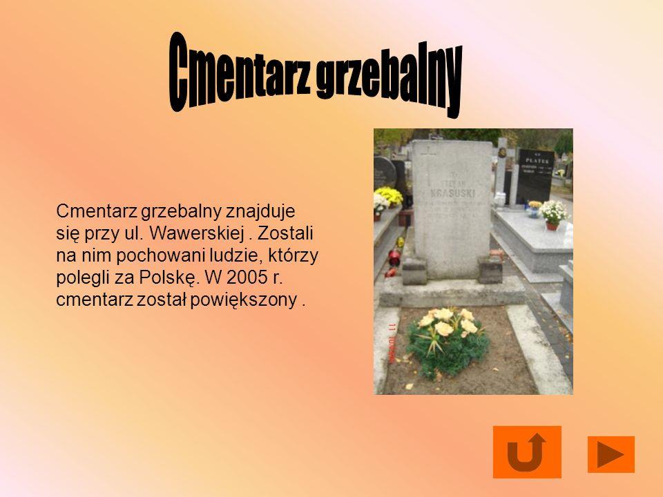 Cmentarz grzebalny
