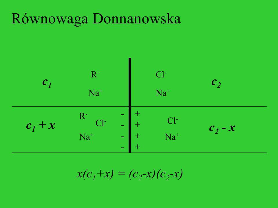 Równowaga Donnanowska