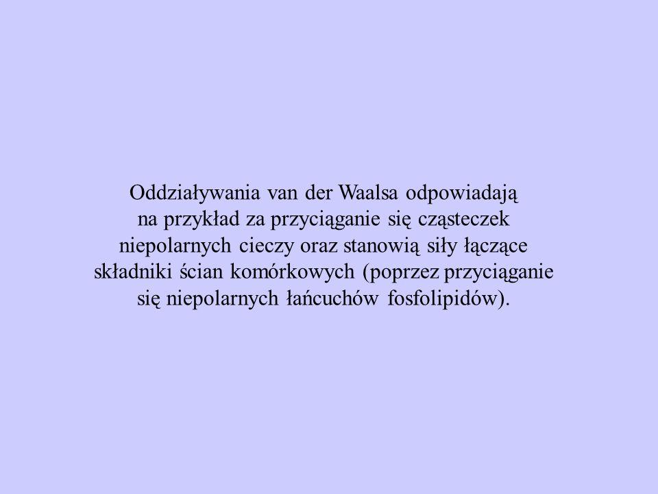 Oddziaływania van der Waalsa odpowiadają