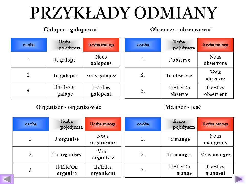 Organiser - organizować