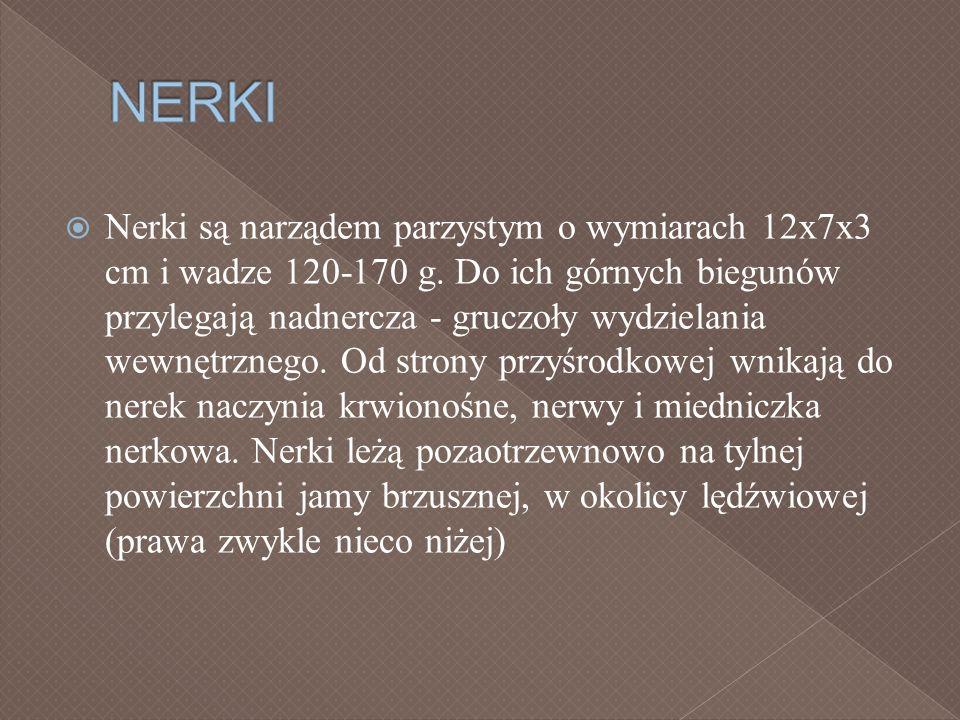 NERKI