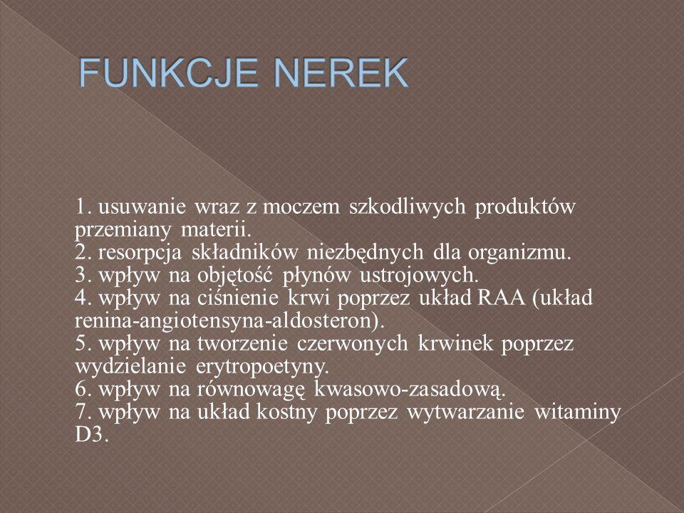 FUNKCJE NEREK