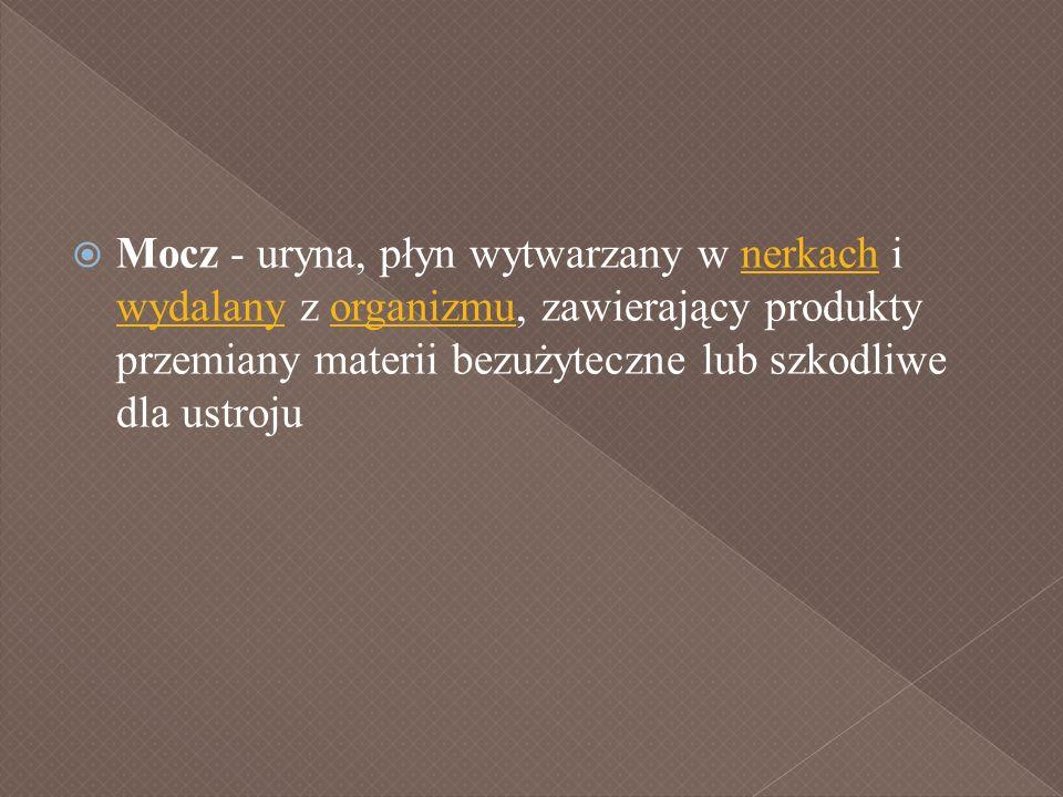 Mocz - uryna, płyn wytwarzany w nerkach i wydalany z organizmu, zawierający produkty przemiany materii bezużyteczne lub szkodliwe dla ustroju