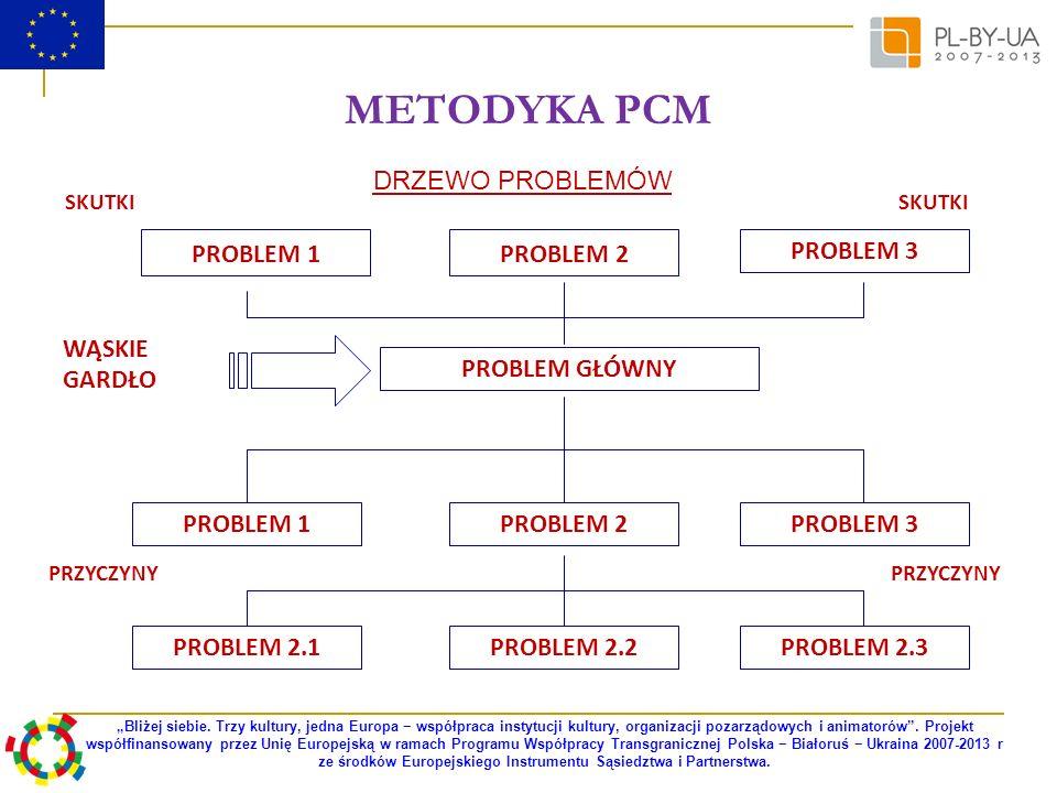 METODYKA PCM DRZEWO PROBLEMÓW PROBLEM 1 PROBLEM 2 PROBLEM 3