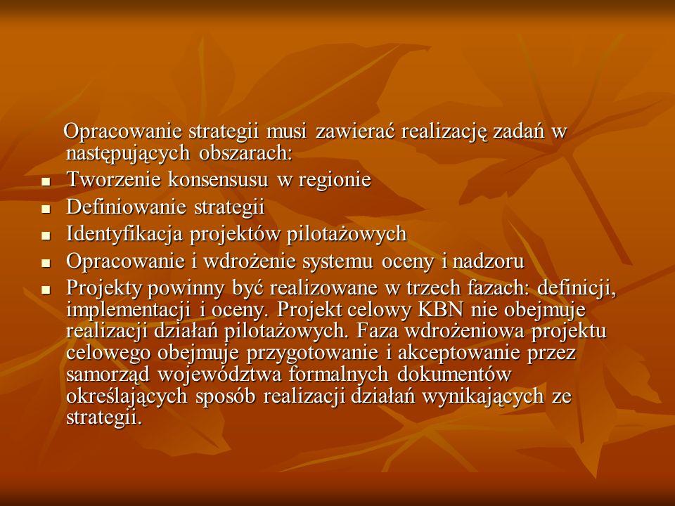 Opracowanie strategii musi zawierać realizację zadań w następujących obszarach: