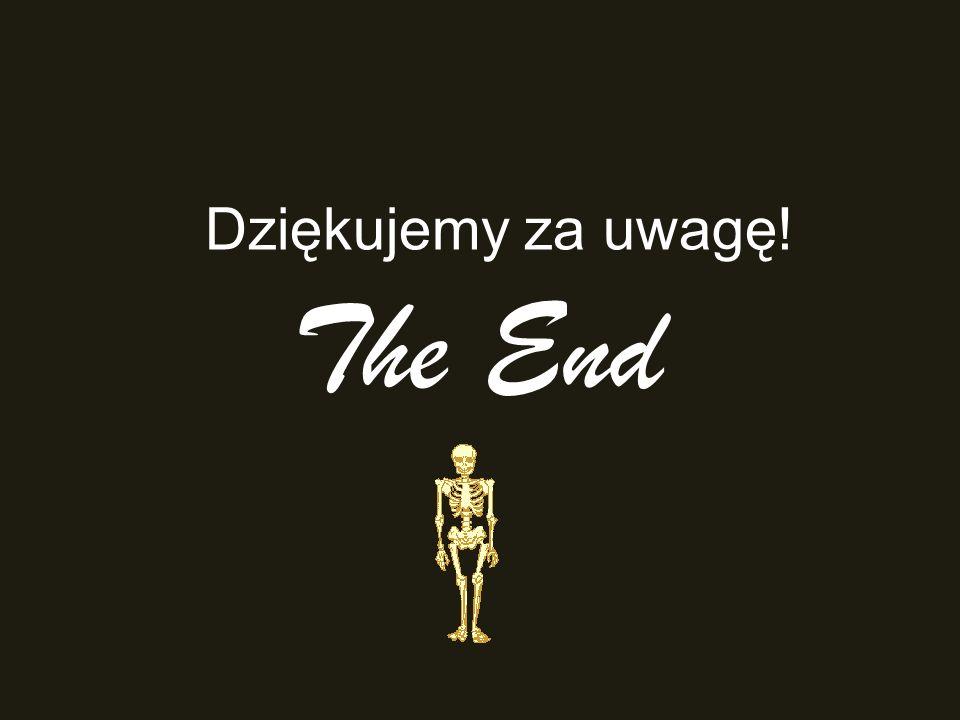 Dziękujemy za uwagę! The End
