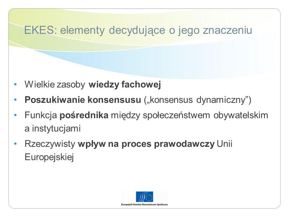 EKES: elementy decydujące o jego znaczeniu