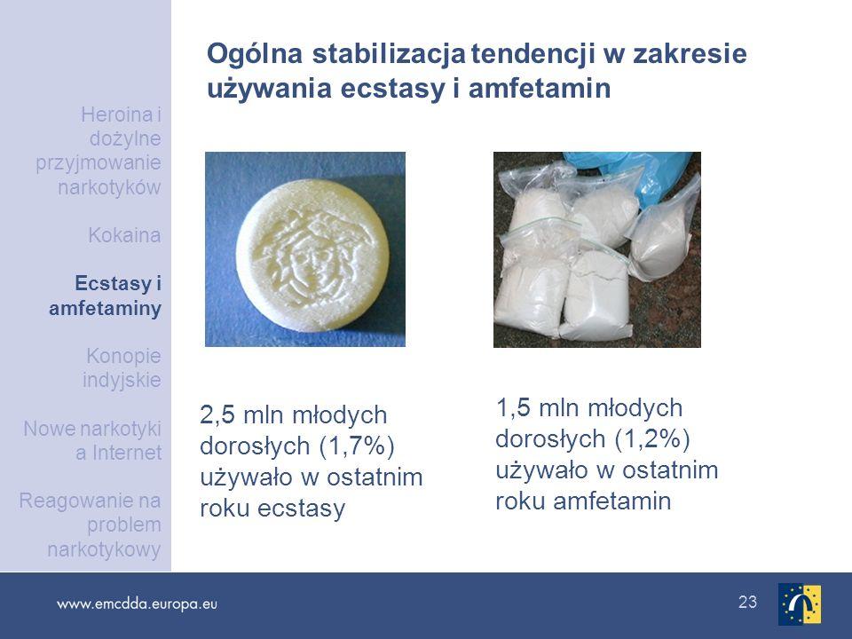 Ogólna stabilizacja tendencji w zakresie używania ecstasy i amfetamin