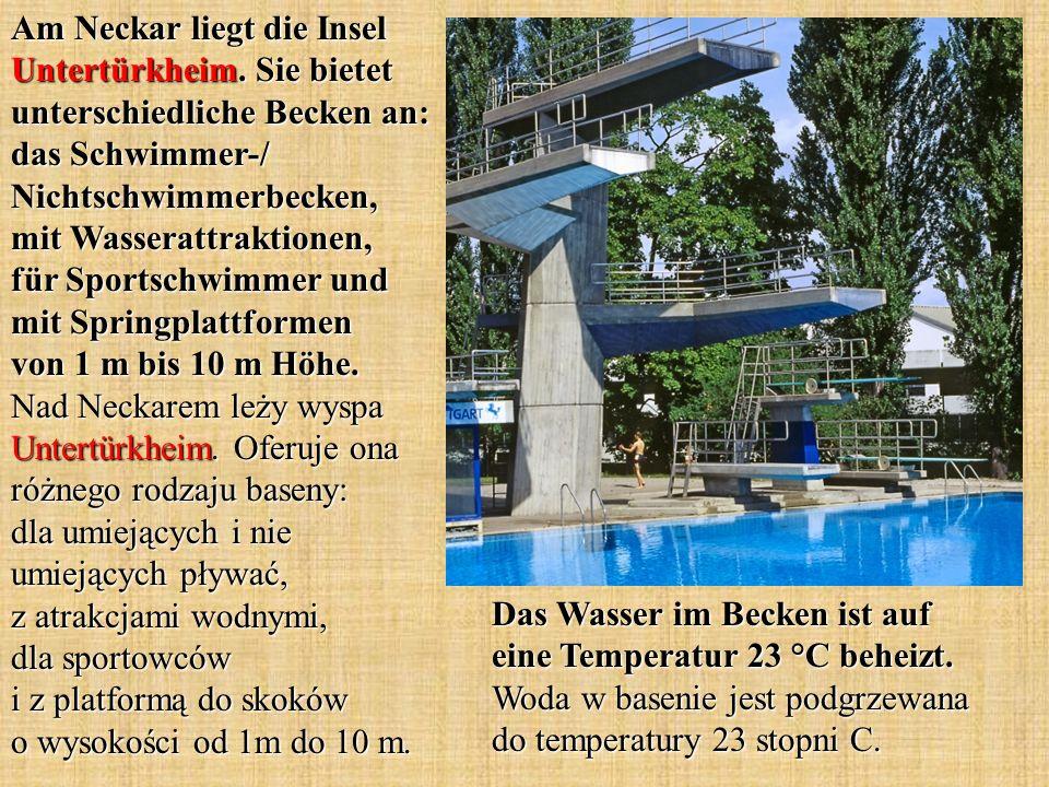 Am Neckar liegt die Insel Untertürkheim