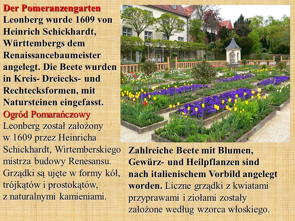 Der Pomeranzengarten Leonberg wurde 1609 von Heinrich Schickhardt, Württembergs dem Renaissancebaumeister angelegt. Die Beete wurden in Kreis- Dreiecks- und Rechtecksformen, mit Natursteinen eingefasst. Ogród Pomarańczowy Leonberg został założony w 1609 przez Heinricha Schickhardt, Wirtemberskiego mistrza budowy Renesansu. Grządki są ujęte w formy kół, trójkątów i prostokątów, z naturalnymi kamieniami.