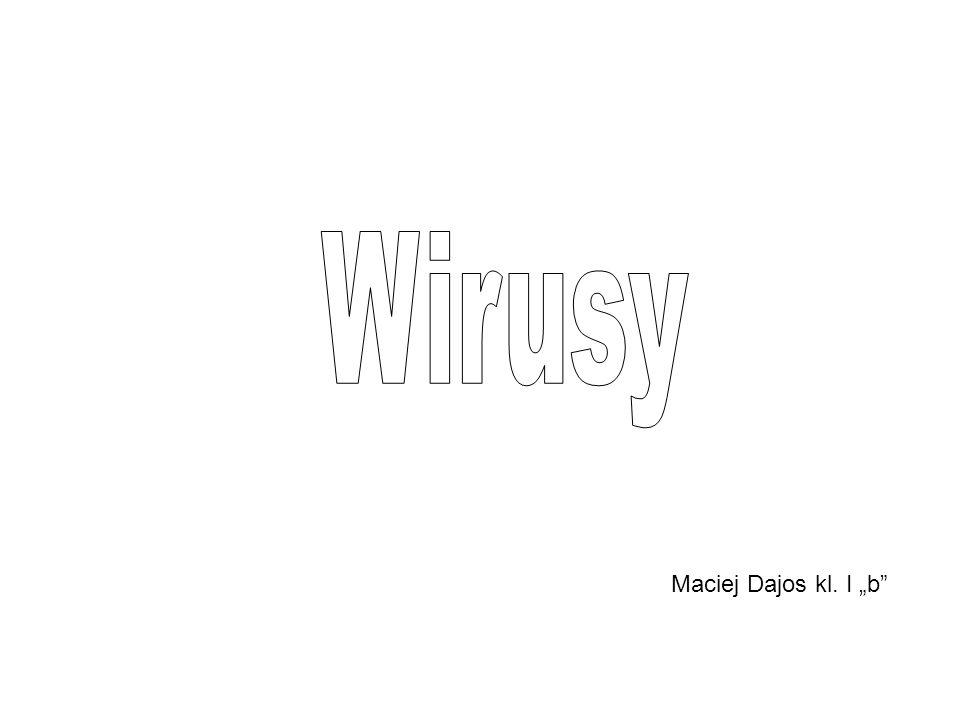 """Wirusy Maciej Dajos kl. I """"b"""