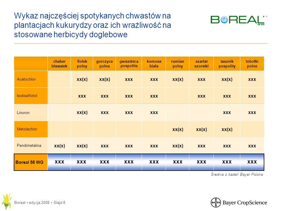 Wykaz najczęściej spotykanych chwastów na plantacjach kukurydzy oraz ich wrażliwość na stosowane herbicydy doglebowe