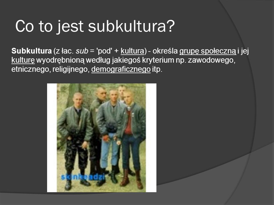 Co to jest subkultura