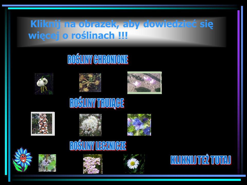 Kliknij na obrazek, aby dowiedzieć się więcej o roślinach !!!