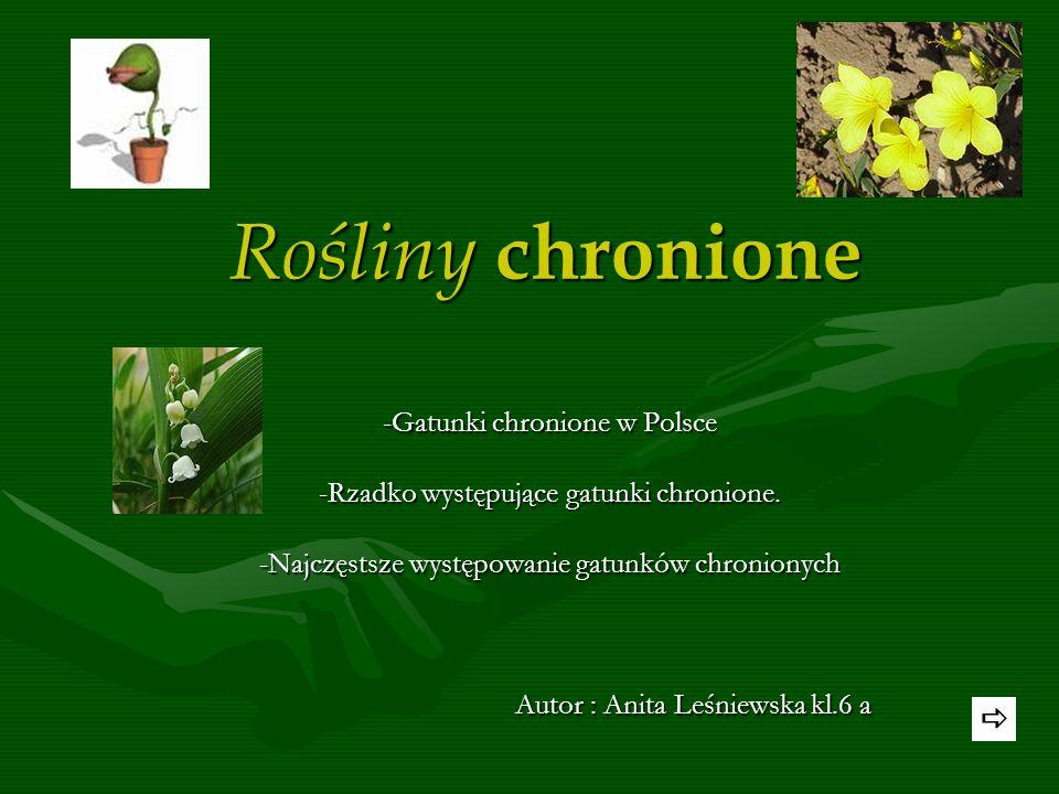 Rośliny chronione -Gatunki chronione w Polsce